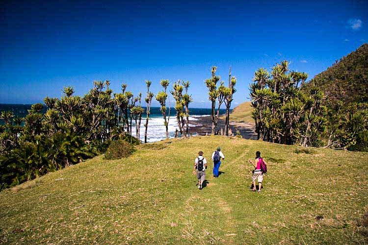 Photographs of Coffee Bay, Coffee Shack, and events in the surrounding areas.